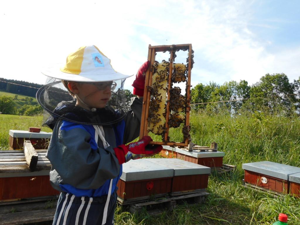 Malý včelař se učí chovat matky